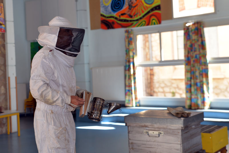 apiculture_ecole_2